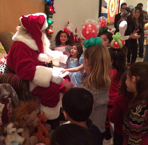Santa for hire - home parties
