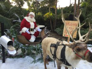 Santa Claus in Malibu with Reindeer